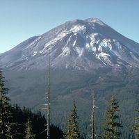 El monte Santa Helena se vuelve verde otra vez