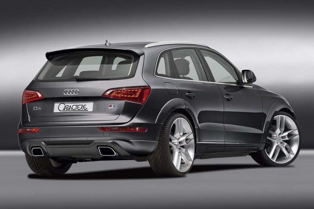 Foto de Audi Q5 Caractere (10/12)