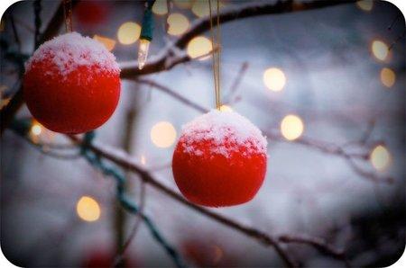 Paseo navideño por la gastronomía de la red LXXIII