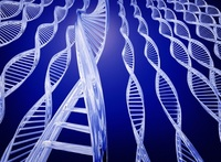 Lo que tus genes cuentan