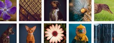 Diagramando nuestras cuentas de Instagram para crear un mayor primer impacto de nuestro perfil