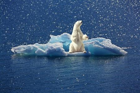 El Nobel Del Cambio Climatico Se Sincera Y Cuenta Por Que Se Hacen Las Cosas Mal Con La Tasa Del Carbono 3
