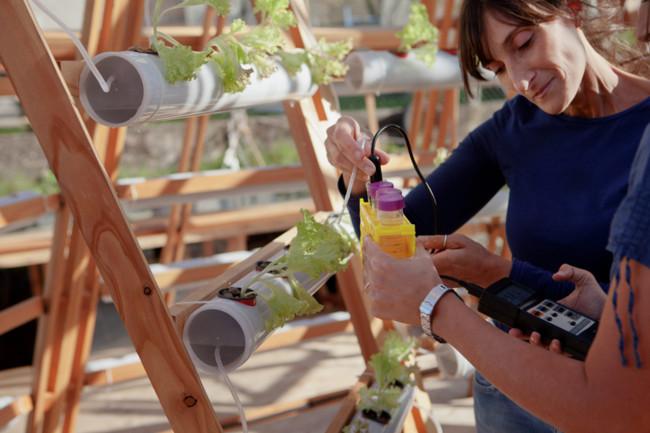 Studiomobile Jellyfish Barge Floating Greenhouse Designboom 08