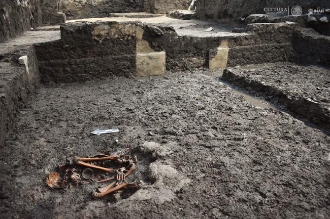 Encuentran aposentos de nobleza mexica en antigua vecindad de Ciudad de México