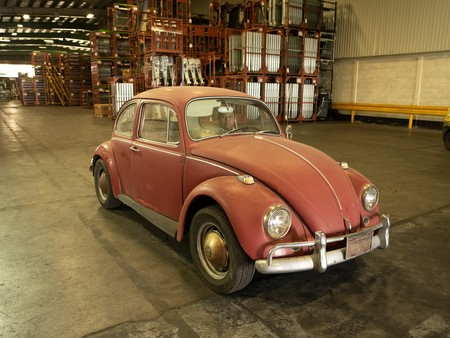 Kathleen Brooks 1967 Annie Beetle Restoration 9180