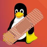 'Sequoia': la vulnerabilidad del kernel Linux que afecta a la mayoría de sus instalaciones y permite obtener privilegios de root