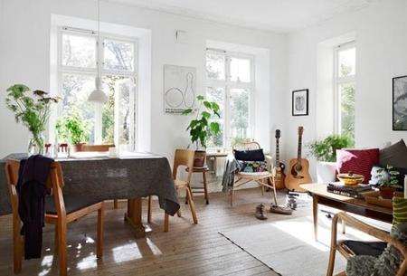 Salones y grandes plantas: cómo decorar