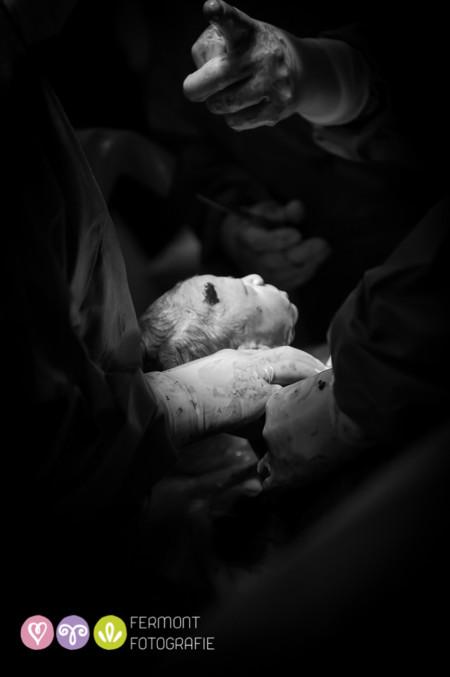 013 Head Born Fermont Fotografie