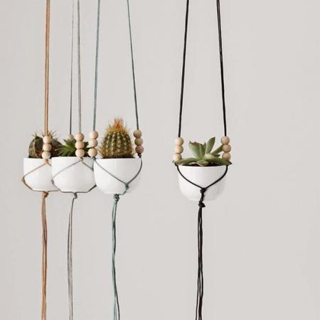 La semana decorativa: plantas, decoración y DIYs