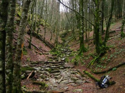 El GR 11 - La ruta de los Pirineos: Diario del Viajero se pone las botas