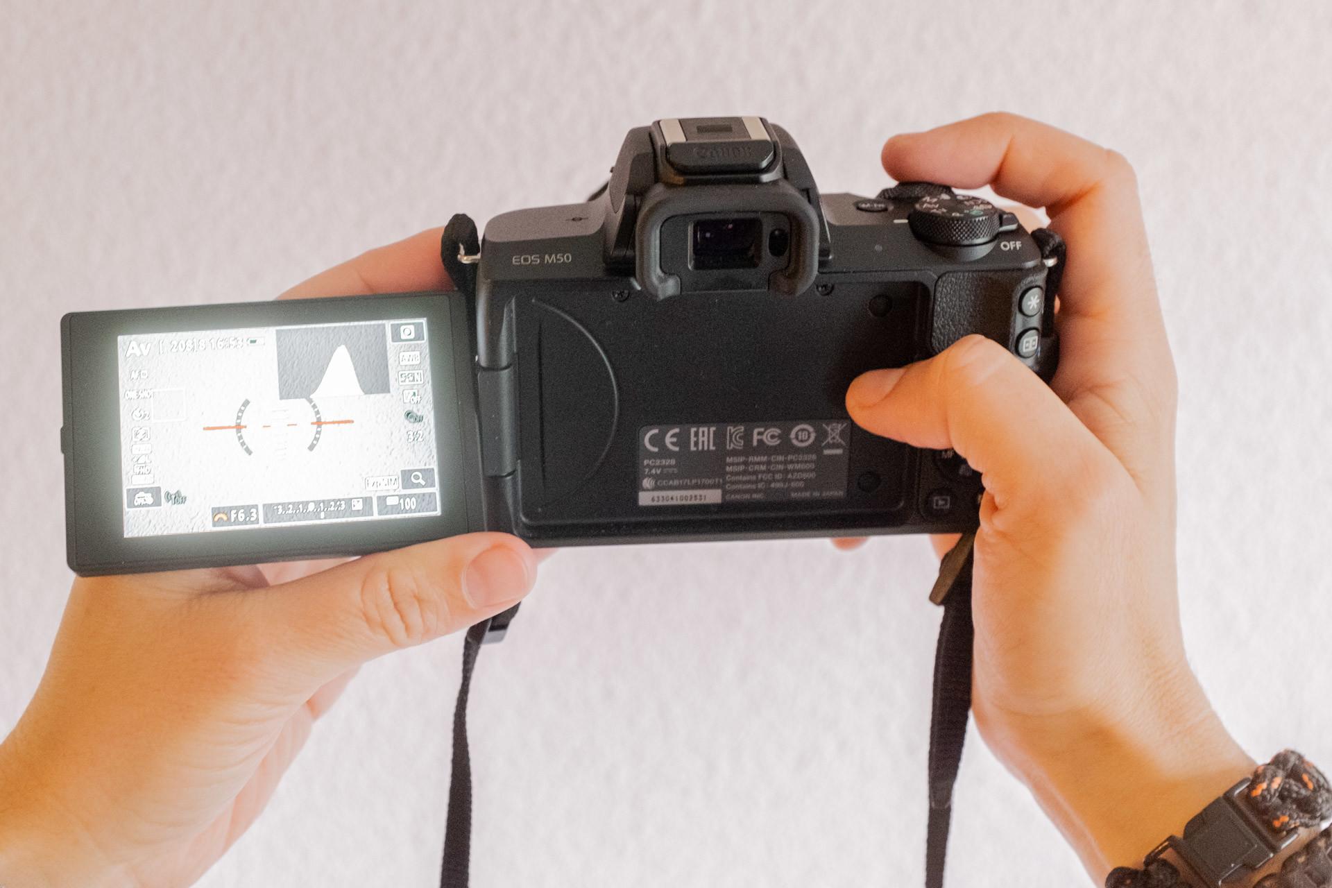 Foto de Canon EOS M50 (29/32)