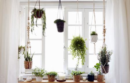 Las ideas de Ikea para rodearnos de detalles verdes y naturales por toda la casa
