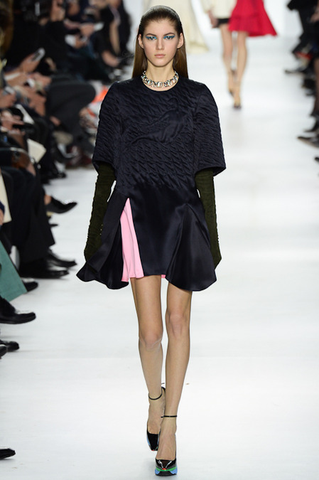 Foto de Christian Dior colección Otoño-Invierno 2014/2015 (9/47)