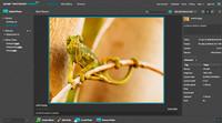 Photoshop Express incorpora soporte para Flickr y posibilidad de guardar los archivos