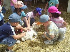 Vacaciones de verano infantiles, los campamentos son una buena opción
