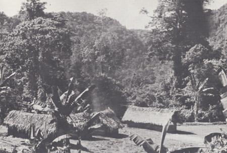 Kaulong Village Umbi