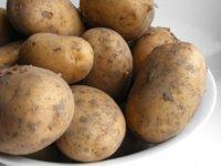 La patata reivindica su efecto en el organismo y demuestra sus valiosos beneficios