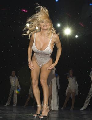 Pamela Anderson se desnudará en plan fino