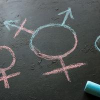 Alemania aprueba el tercer género en el Registro Civil, bajo la denominación de 'diverso'