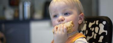 Los cereales en la alimentación infantil: la cebada y el centeno