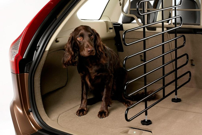 Si llevas mascotas en el coche esta informaci n te va a for Espejo para ver a los ninos en el coche