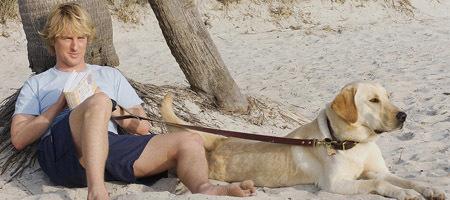Taquilla USA: el chucho que se merendó a Adam Sandler, Brad Pitt, Tom Cruise y un espíritu