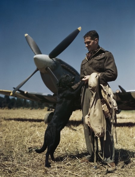 The Second World War In Colour 4