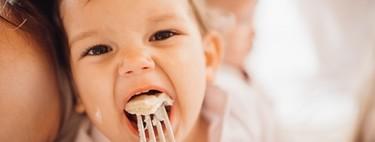 Las carnes en la alimentación infantil: cómo y cuándo ofrecerlas