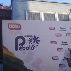Foto 4 de 13 de la galería premios-petalo en Poprosa