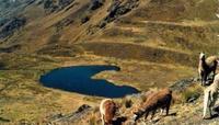 Ruta a Machu Picchu. Otra alternativa al Camino del Inca.
