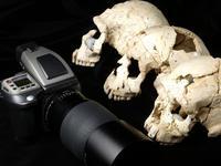 Los nuevos restos arqueológicos de Atapuerca fotografiados con Hasselblad