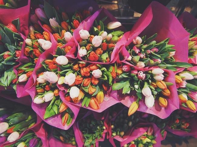 Mercado de las Flores Vogue