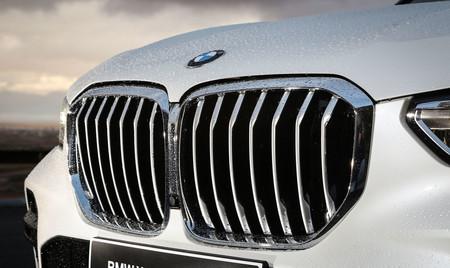 BMW X5 2019 parilla delantera