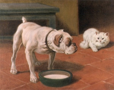 Arthur Heyer The Bulldog And The Cat