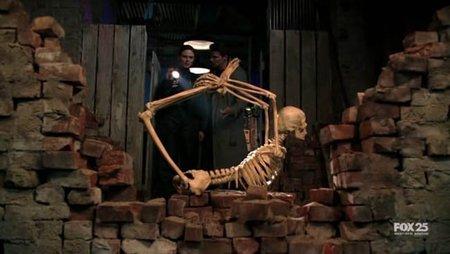 Los cinco cadáveres más asquerosos de 'Bones'