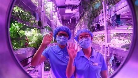 """El """"Palacio Lunar"""" chino: un hábitat que simula el entorno lunar 200 días"""