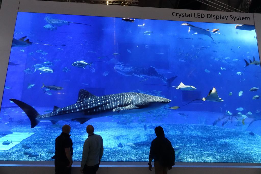 Hemos visto en acción la pantalla Crystal LED gigante de Sony y sí, el futuro le pertenece a la tecnología microLED