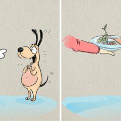 Foto 3 de 6 de la galería gatos-vs-perros en Trendencias Lifestyle