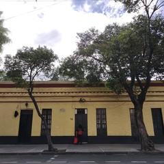 Foto 8 de 38 de la galería fotos-con-el-motorola-edge en Xataka México