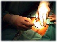 Incremento de cesáreas por miedo de los médicos a posibles denuncias