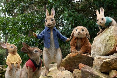 Conejos Peter Rabbit
