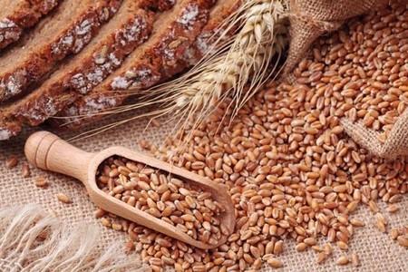 Granos enteros: cereales necesarios para una dieta saludable