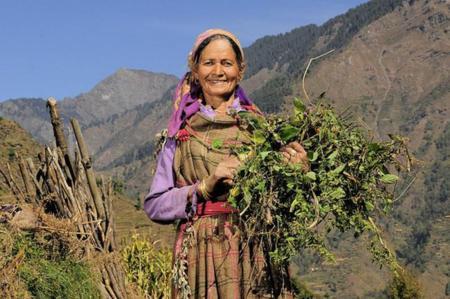 El rol de la mujer en la agricultura