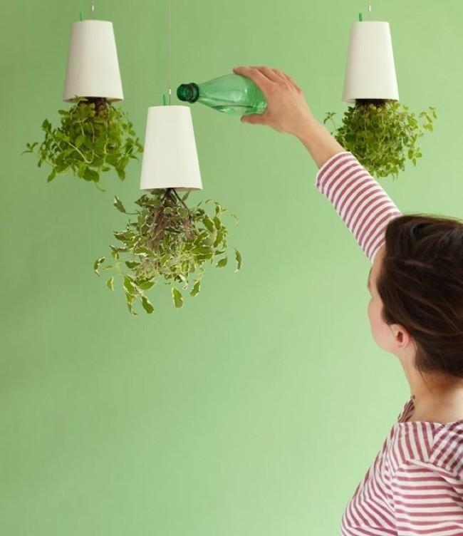 Sin sitio para jarrones algunas ideas originales para for Plantas de interior para colgar