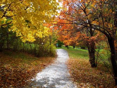 En breve podrás ir caminando por senderos desde Nueva York a Canadá