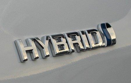 Producción híbridos retomada