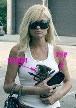Paris Hilton ya tiene una PSP