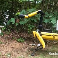 Spot, el perro robot de Boston Dynamics, ahora tiene un brazo con el que recoge la ropa, ayuda en el jardín y salta a la comba