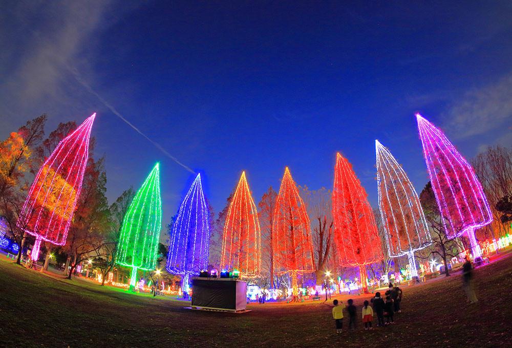 Adachi Luminous Night, el Festival de las luces que ilumina Tokio en diciembre