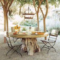 Una mesa rústica en mitad del pinar